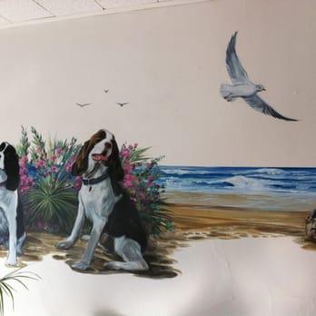 You Dirty Dog Pet Grooming Long Beach