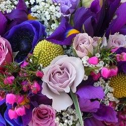 Refresh my vase closed florists 4239 n nevada ave colorado photo of refresh my vase colorado springs co united states we bring mightylinksfo