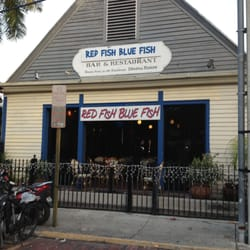 Red fish blue fish 104 photos 170 reviews bars 407 for Red fish blue fish key west