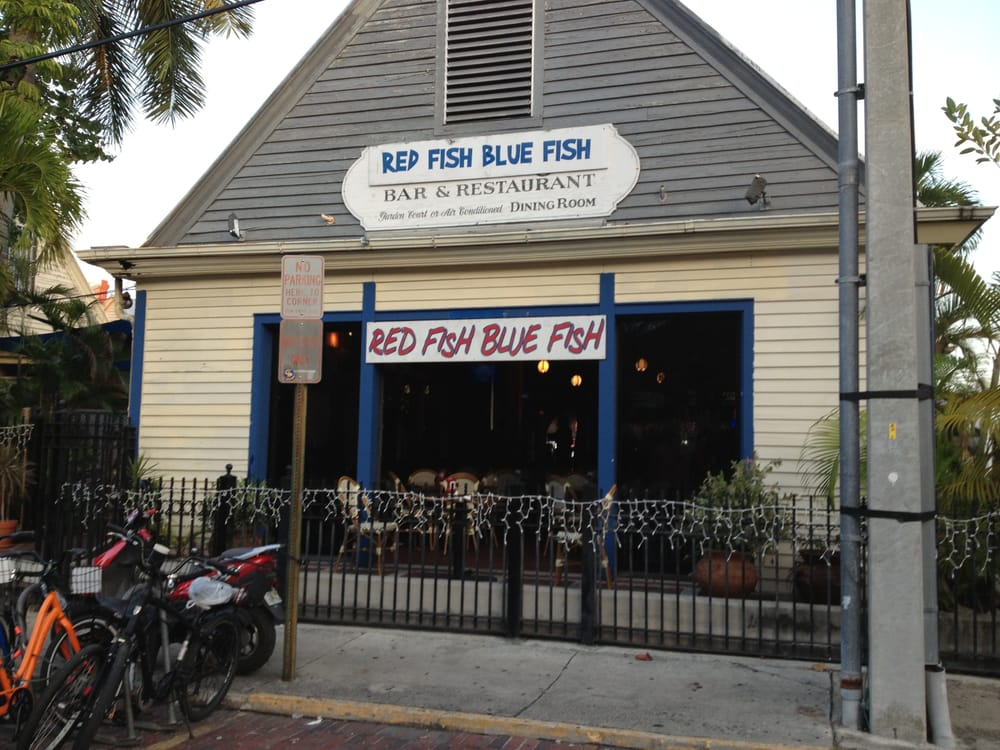 Red fish blue fish 100 photos 167 reviews bars 407 for Seven fish key west fl