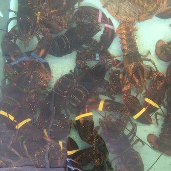 Wells Beach Lobster Pound - 27 Photos & 34 Reviews - Seafood - 321 Webhannet Dr, Wells, ME ...