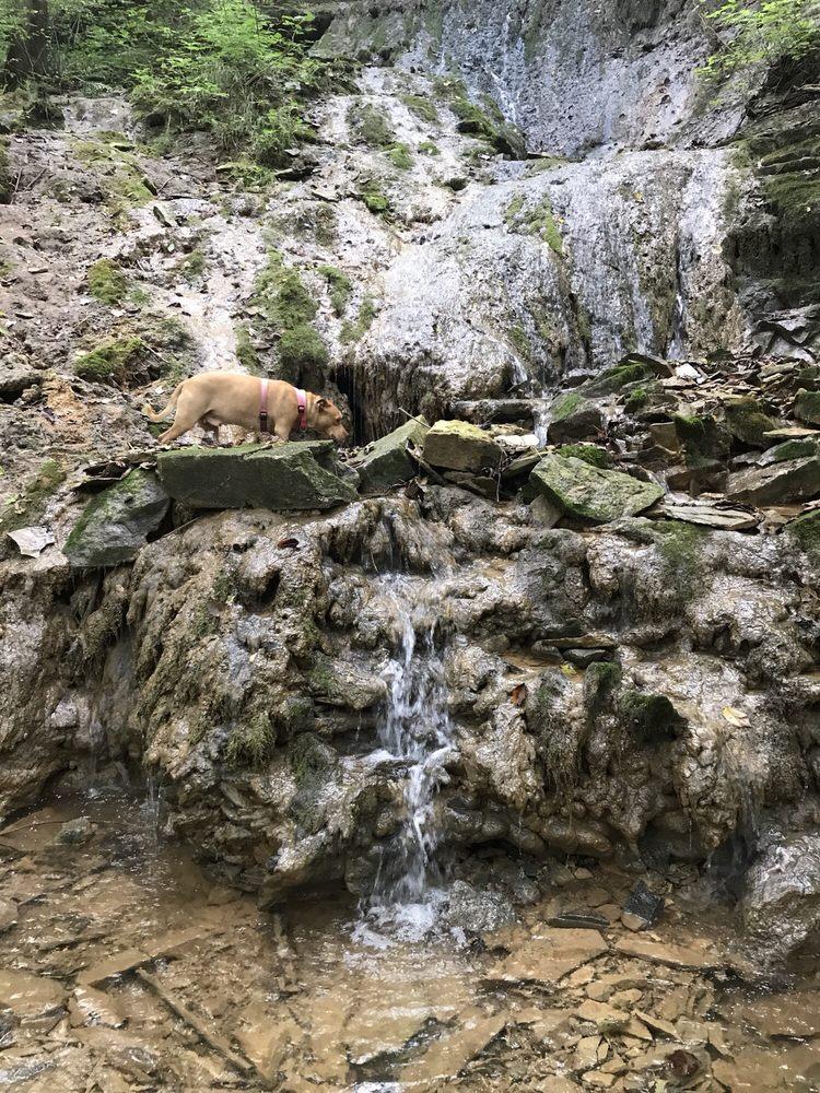 Buttermilk Falls: 737 High St, Brandenburg, KY