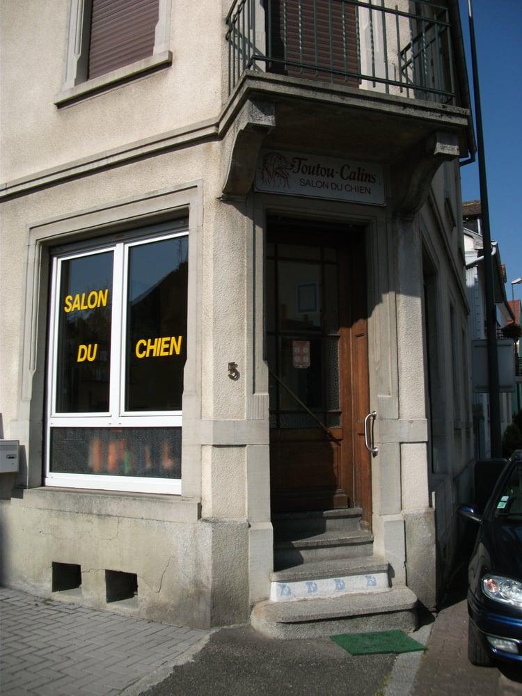 Toutou calins salon du chien hundeklipning 5 rue for Salon du chien
