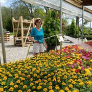 Our Little Red Photo Of Riverbend Nurseries Franklin Tn United States