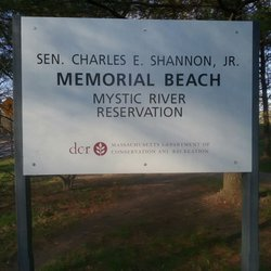 Image result for Shannon Beach in Winchester
