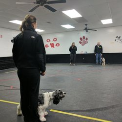 Image Result For Dog Training North Providence Ri