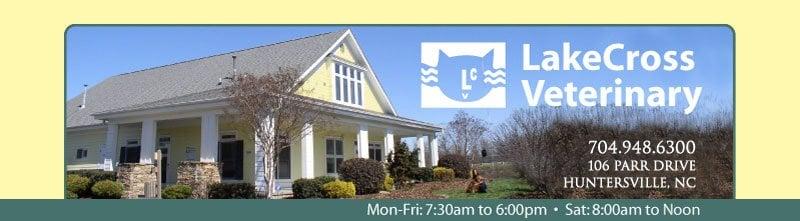 Lakecross Veterinary Hospital PA