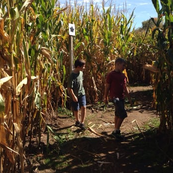 Photo of Gull Meadow Farms   Richland  MI  United States  Corn maze. Gull Meadow Farms   39 Photos   20 Reviews   Fruits   Veggies
