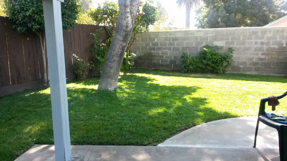 Right Landscaping Inc: Patterson, CA