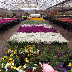 Photo Of Condurso S Garden Center Farm Market Montville Nj United States