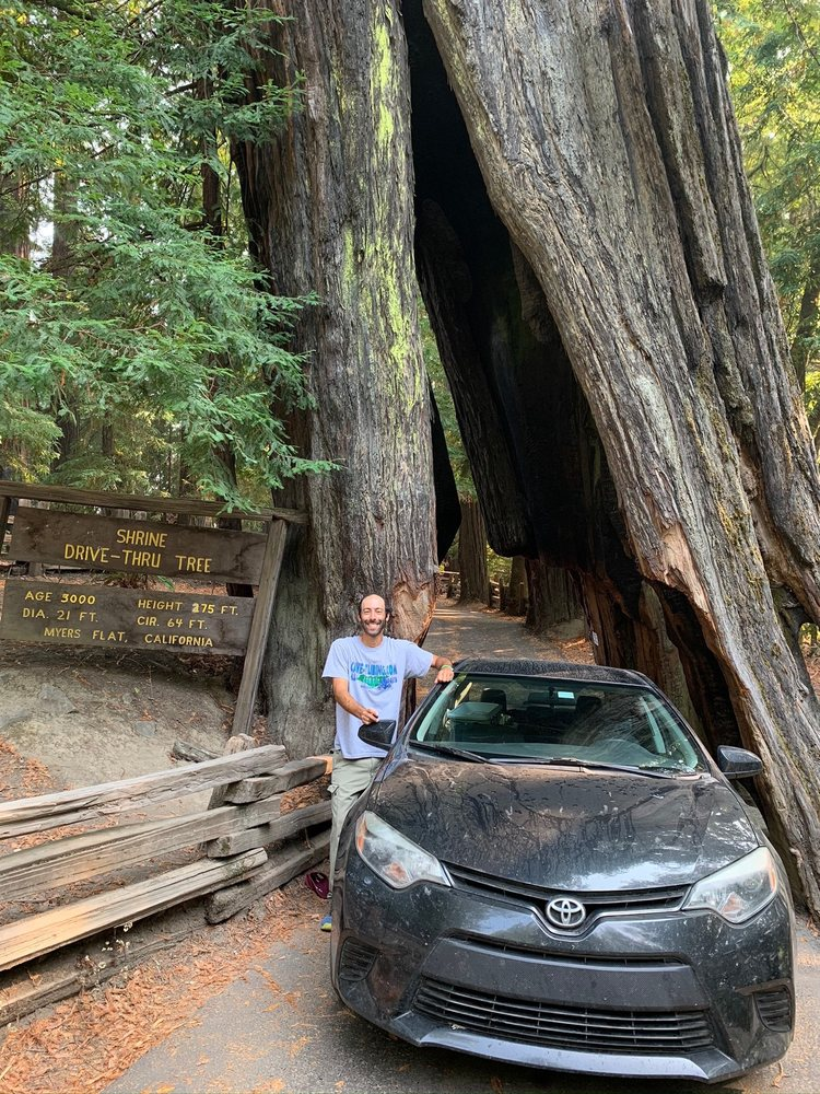 Photo of Shrine Drive Thru Tree: Meyers Flat, CA