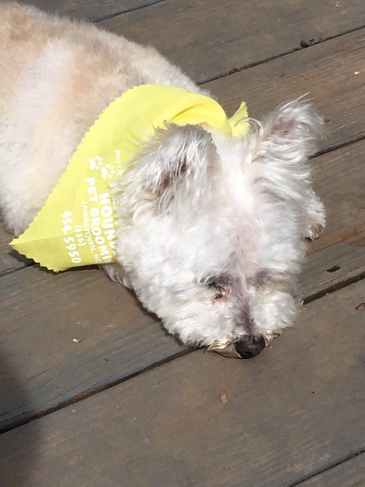 Heavenly Houndz Pet Grooming: 705 W Main St, Jamestown, NC