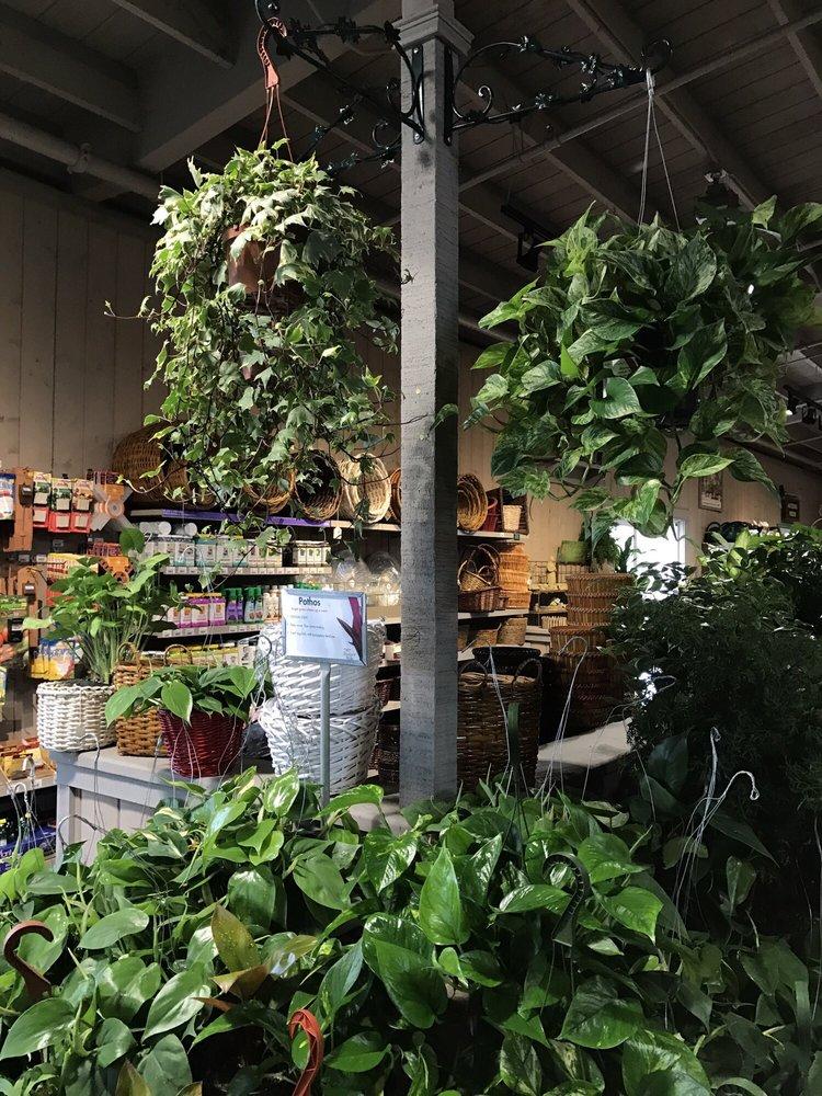 Armstrong Garden Centers 63 Photos 59 Reviews Gardening Centres 7360 San Ramon Road