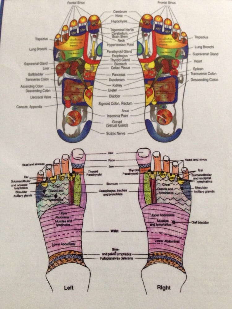 Chart Of What Parts Of Your Body Link To The Places On Your Feet Yelp