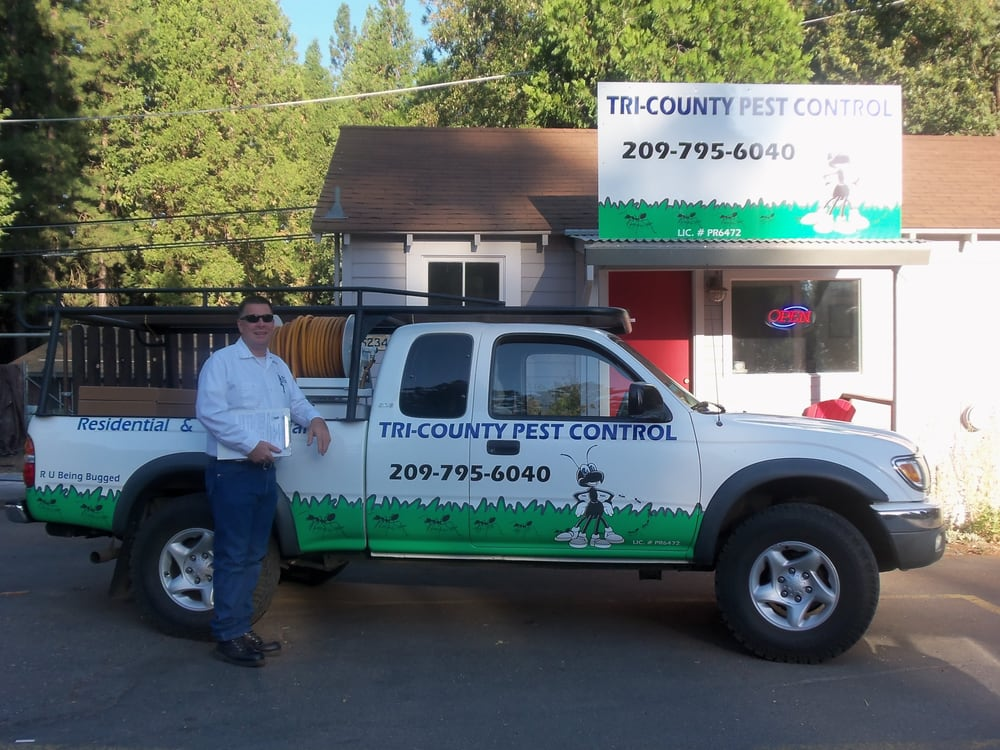 Tri-County Pest Control: 5234 Hwy 4, Hathaway Pines, CA