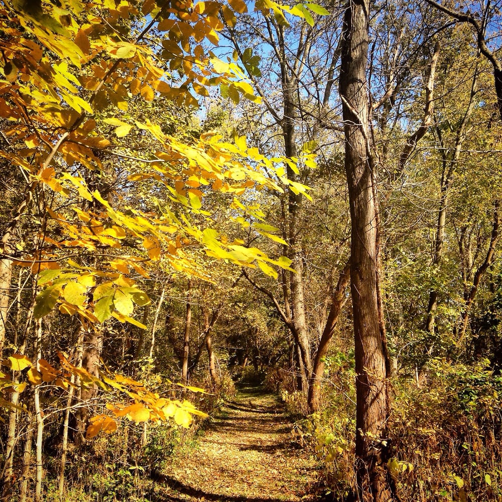 Pecatonica River Forest Preserve: 7260 Judd Rd, Pecatonica, IL
