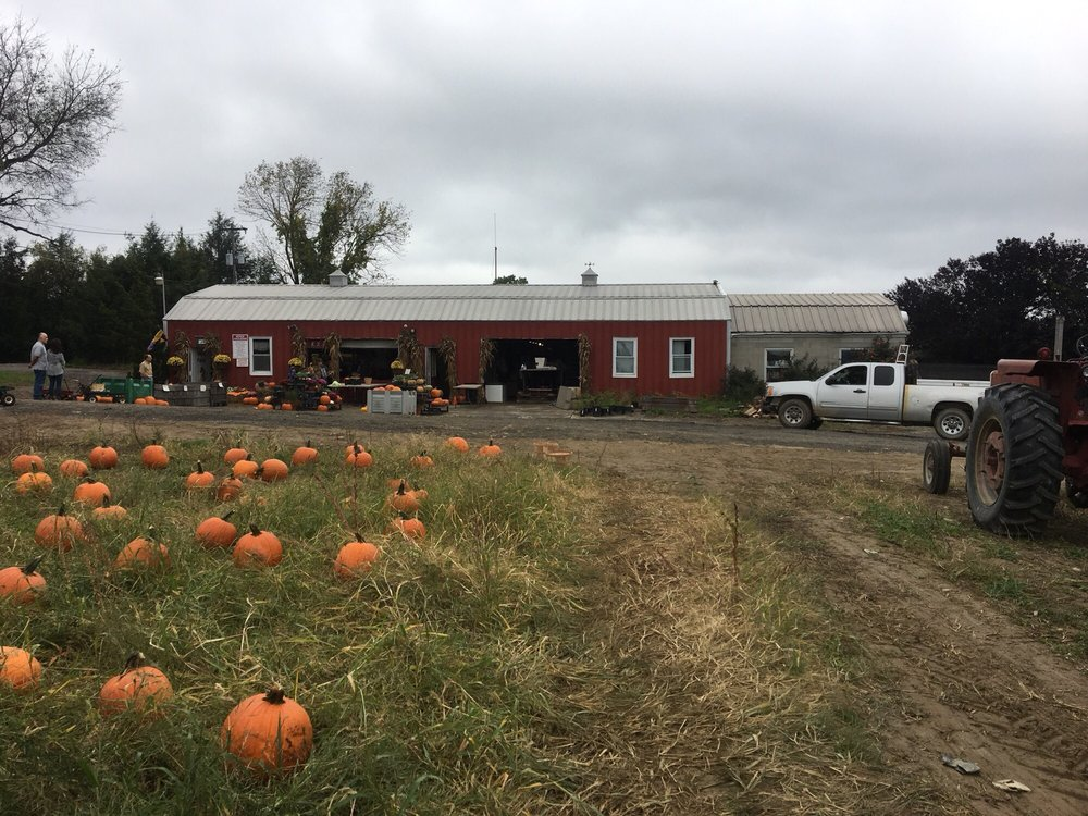 Race Farm: 87 Belcher Rd, Blairstown, NJ
