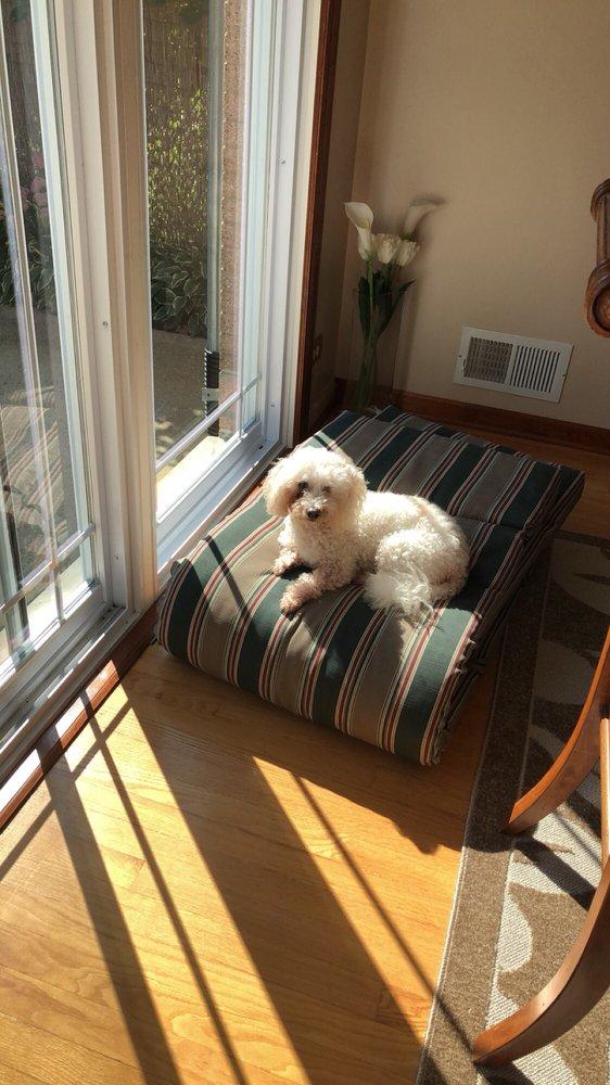 Furry Tail Dog Grooming Salon: 9434 N Waukegan Rd, Morton Grove, IL