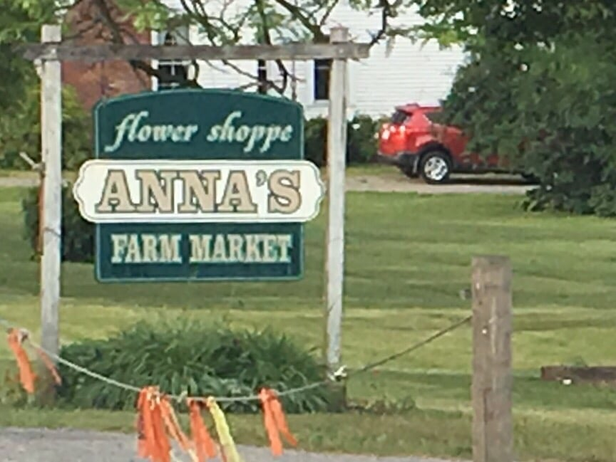 Anna's Flower Shoppe: 1667 State Rte 38, Moravia, NY