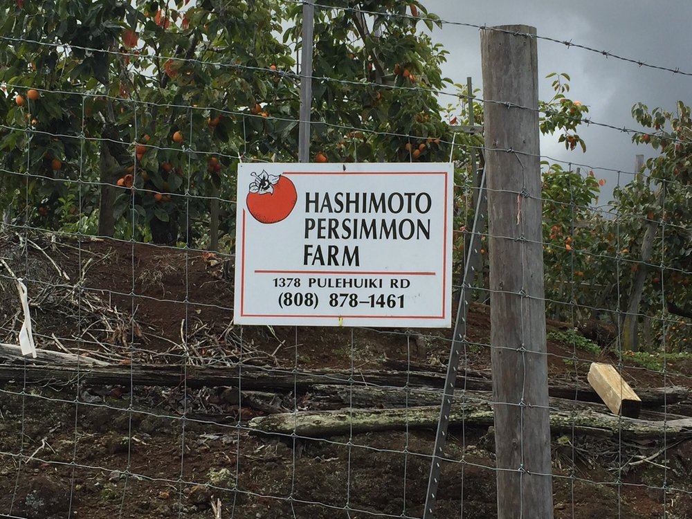 Hashimoto Persimmon Farm: 1378 Pulehuiki Rd, Kula, HI