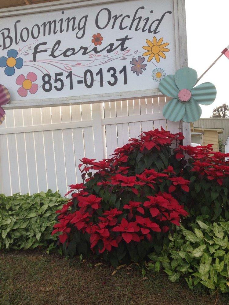 Blooming Orchid Florist: 6616 W Park Ave, Houma, LA