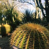Photo Of Tucson Botanical Gardens   Tucson, AZ, United States