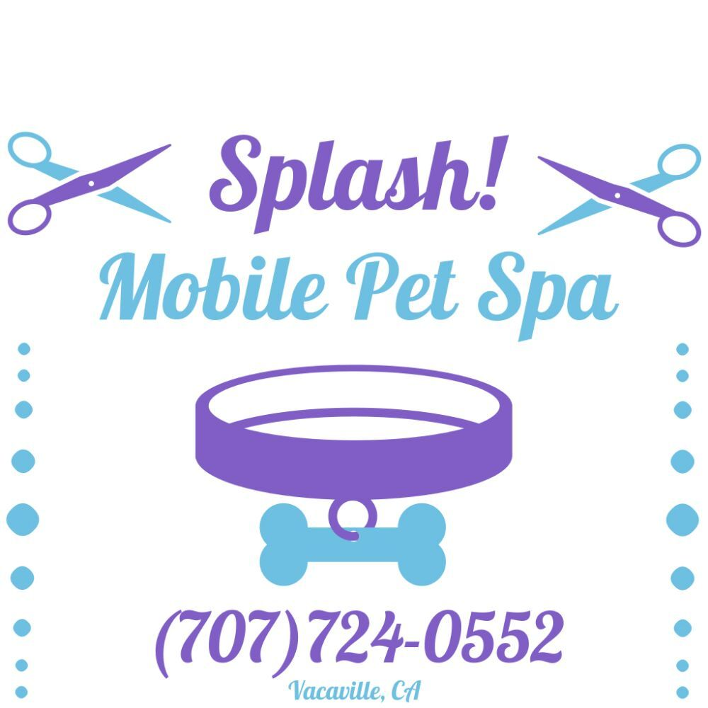 Splash! Mobile Pet Spa: Vacaville, CA