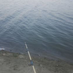 Santa ana river lakes 67 photos 139 reviews fishing for Santa ana river lakes fishing