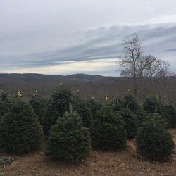 photo of evergreen ridge christmas tree farm newland nc united states - Christmas Tree Farm Asheville Nc