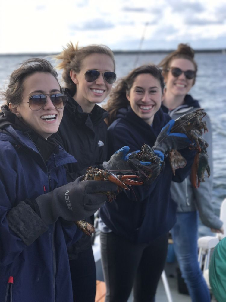 Chatham Boat Tours: 99 Squanto Dr, Chatham, MA