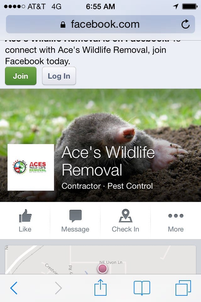 Aces Wildlife Removal: Elgin, OK