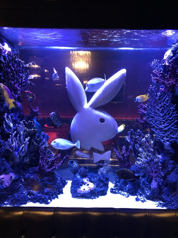 City Aquarium: 44 Dobbin St, Brooklyn, NY