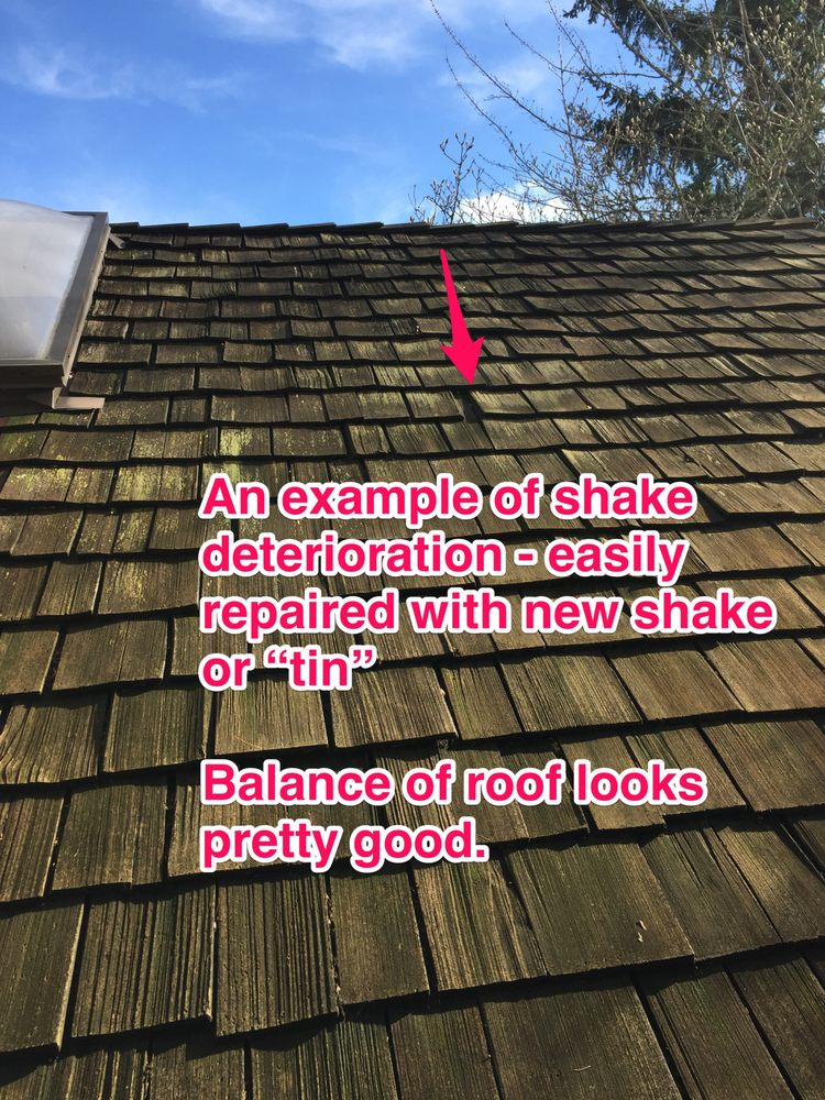 Residential Roof Consultants: Bellevue, WA