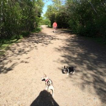 Stodders Neck Dog Park