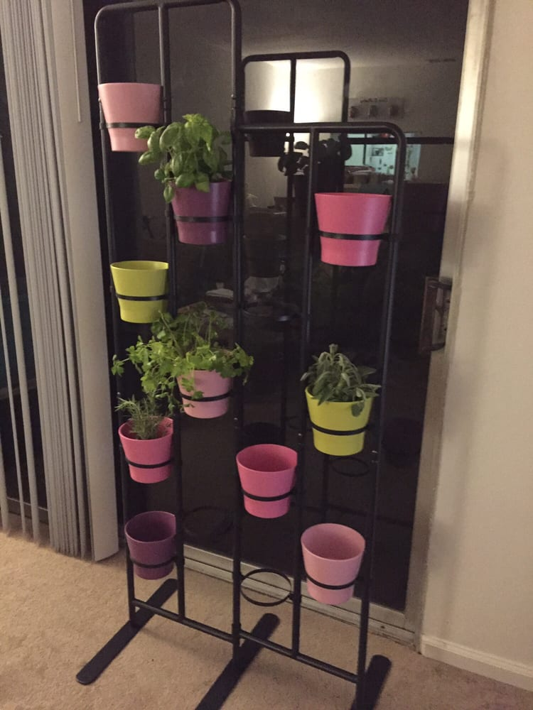 Photo Of Ikea San Go Ca United States Socker Plant Stand I