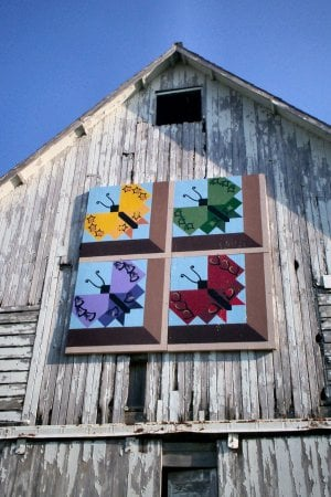 Hamilton County Barn Quilts: Webster City, IA