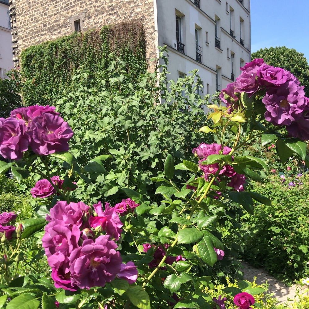 Photos pour jardin villemin yelp for Jardin villemin