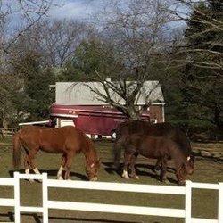 Getner Barn Horseback Riding 22 Richards Ave Norwalk Ct
