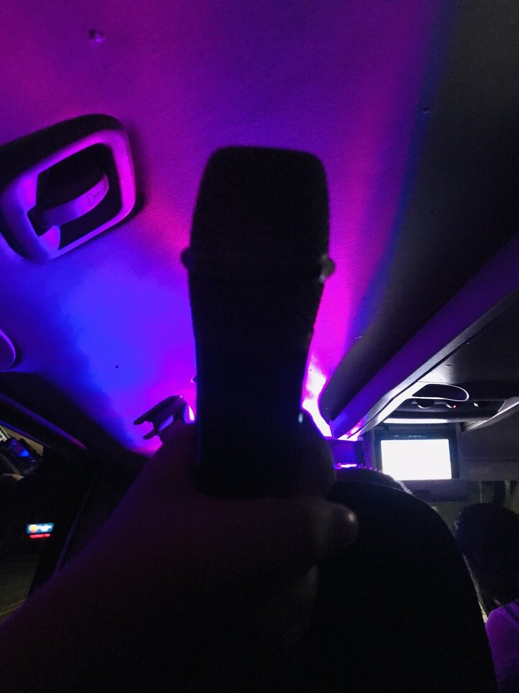 Car Trek - The Karaoke Cab: Traverse City, MI