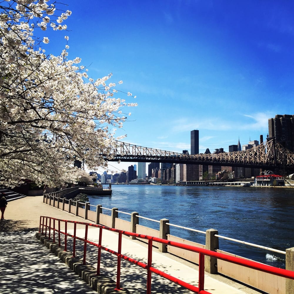 Photo of Roosevelt Island - New York, NY, United States