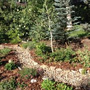 Native U0026 Adapted Photo Of Xeric Gardens   Highlands Ranch, CO, United  States. Dry Creek Bed