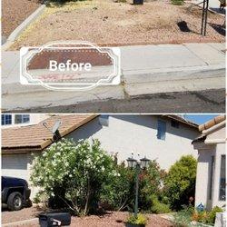 sagos landscape tree service 36 photos 16 reviews landscaping