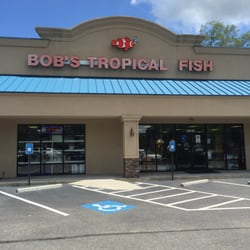 Bob s tropical fish 10 photos local fish stores 3619 for Local pond stores