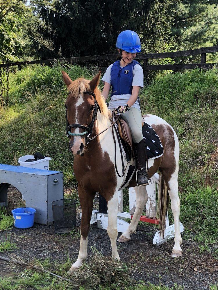 20/20 Horsemanship: Blessed Ln, Leesburg, VA