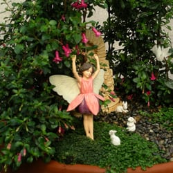 Photo Of M Nursery Orange Ca United States Shade Fairy