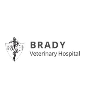 Brady Veterinary Hospital: 450 Monte Brady Rd, Montesano, WA