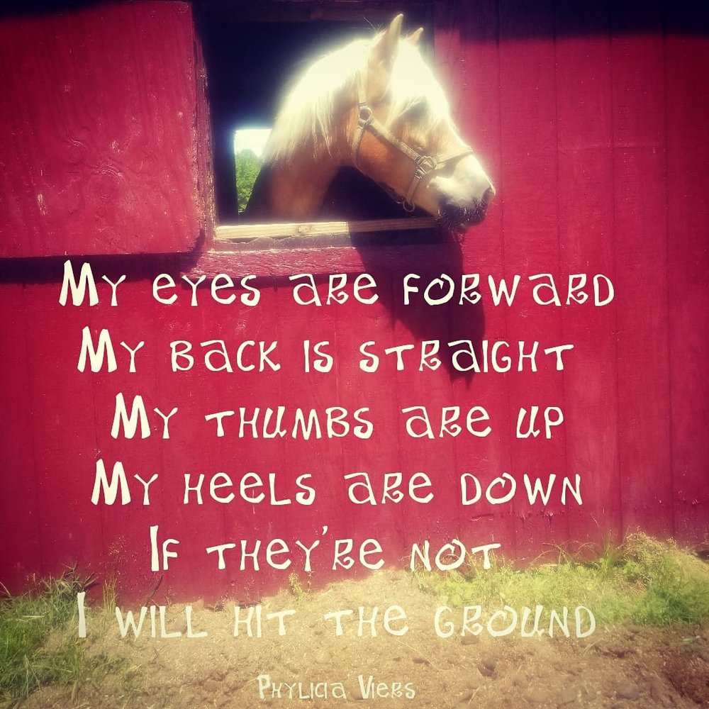 Skyward Pines Equestrian Center: 2940 W Main St Ext, Elizabeth City, NC