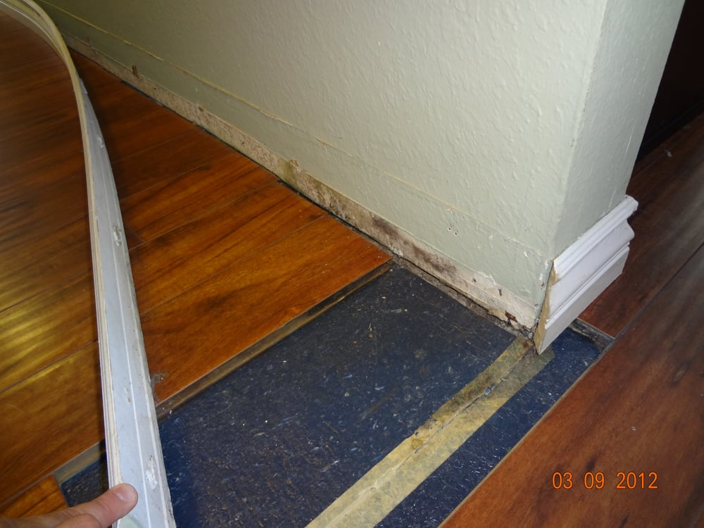Mold growth behind baseboard after water damage yelp for Water damage baseboard bathroom
