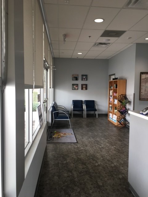 Discovery Bay Veterinary Clinic: 14810 Hwy 4, Discovery Bay, CA
