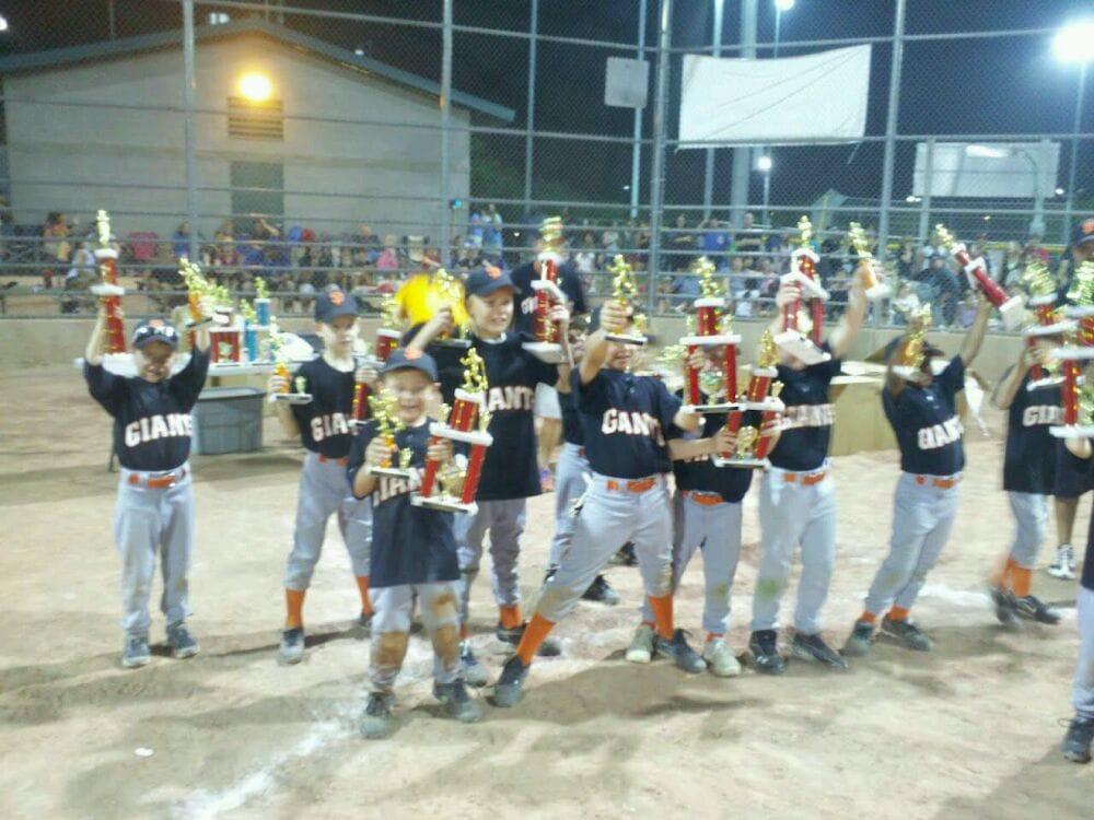 Chandler American Little League